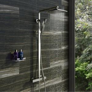 shower riser